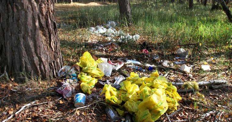 мусор на курганском пляже