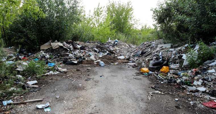 мусор в Курганской области
