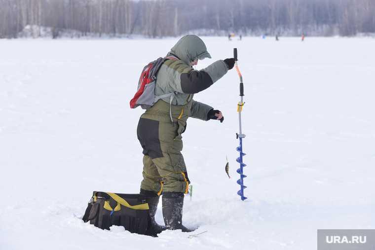 Челябинская область рыбалка письмо Путину