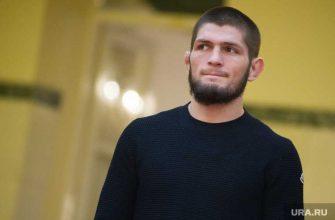 Хабиб нурмагомедов карьера ufc боец продолжение возвращение