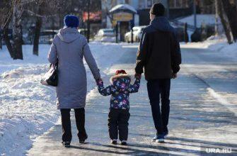 Госдума бессараб шеин льготы дети семья выплаты компенсации